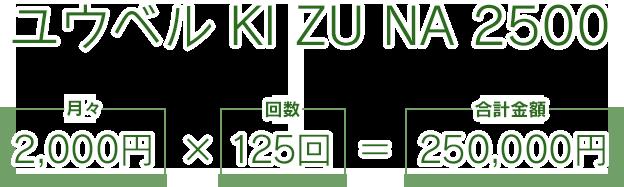 ユウベル KI ZU NA 2500