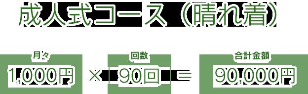 成人式コース(晴れ着)
